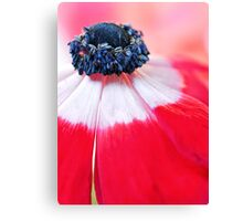 Red Anemone....(II) Canvas Print