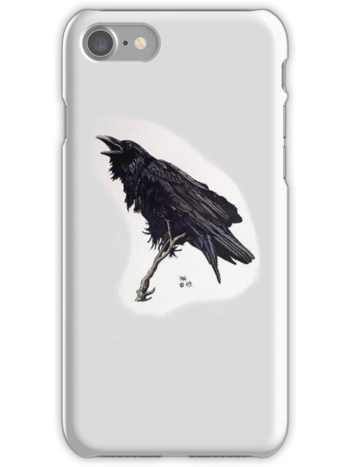 Crow by ianspetportrait