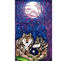 Wolf Love Under a Full Moon Photographic Print