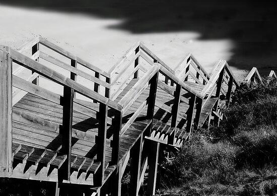 Descent by Paul Pasco