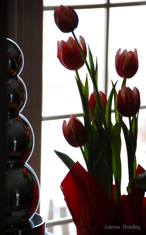 Chrome and Tulips by Joanne  Bradley
