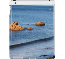 Rock Islands, Penguin, Tasmania, Australia. iPad Case/Skin