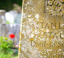 Old headstone in Clayton Churchyard, Sussex by Maxine Collins