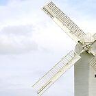 'Jill' Windmill, South Downs near Brighton by Maxine Collins