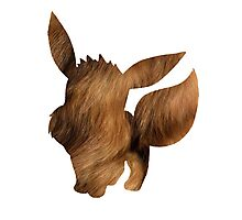 Eevee used Tail Whip Photographic Print