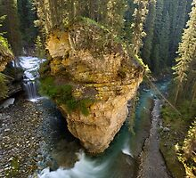 Morning in Johnston Canyon, Banff by Matt Tilghman