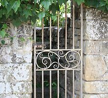 Ornate gate and foliage by Maxine Collins