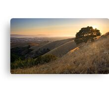 California East Bay Hills in Summer Canvas Print