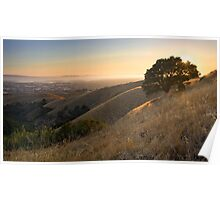 California East Bay Hills in Summer Poster
