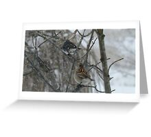 The Junco and The Sparrow In The Snow Greeting Card