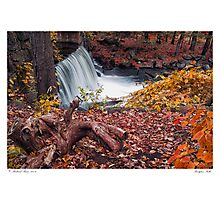 Bridgton Falls Photographic Print