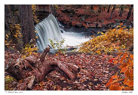 Bridgton Falls by Richard Bean