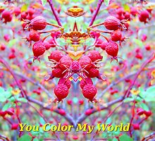 You Color My World by Max DeBeeson