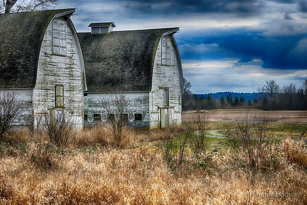 The Old Dairy by Heather Haderly