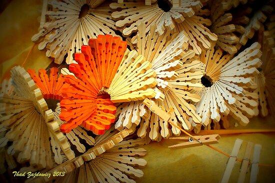 Clothespins by Thad Zajdowicz