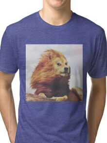 Doge - King of the Pride Tri-blend T-Shirt