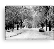 Everything is pretty when covered by snow © Canvas Print