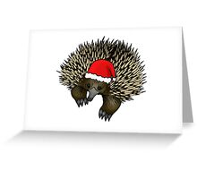 Christmas echidna Greeting Card