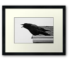 bill is hungry Framed Print