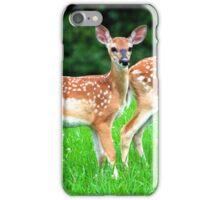 Beautiful Twin Fawns iPhone Case/Skin