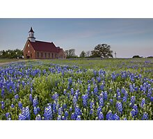 Texas Bluebonnets in front of a Church Photographic Print