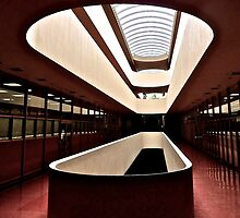 Marin County Civic Center, Frank Lloyd Wright, Architect by Scott Johnson