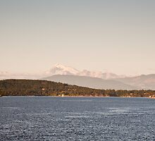 Mount Baker by Jaime Pharr