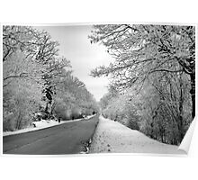 The Winter Road Poster