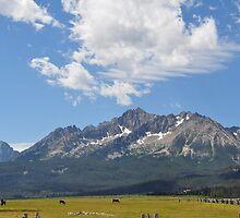 Sawtooth Mountain Range - Stanley, Idaho by CADavis
