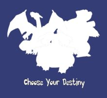 Choose Your Destiny by danzan22