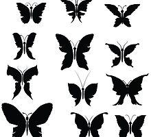 butterflies by valeo5