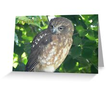 Thank you says the wise old owl Greeting Card