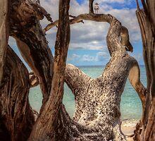 Ahoy ... by Gary  Davey (Jordy2010)