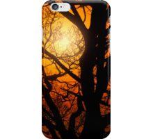 Tree in Mist iPhone Case/Skin