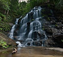 Sylvia Falls, (10-2-13) by Warren  Patten