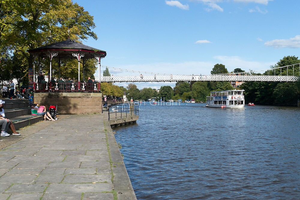 Chester on the Dee by Alan Gillam