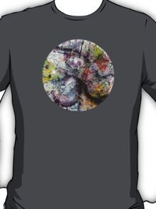 Celebrating Chaos T-Shirt