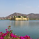 The Jal Mahal in Jaipur. by Alan Gillam