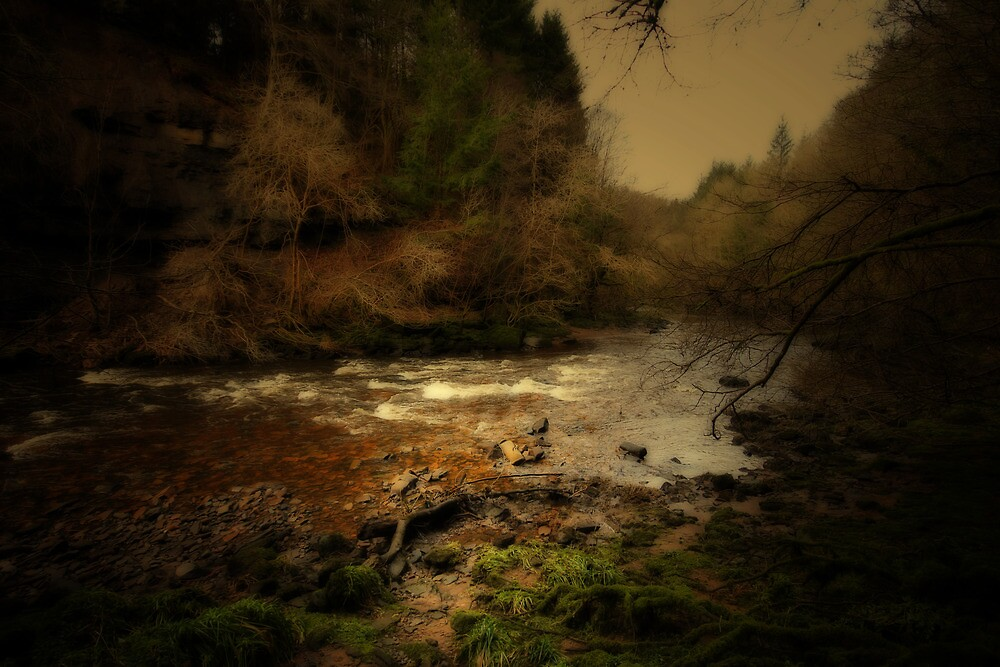 THE RIVER IN THE FOREST by leonie7