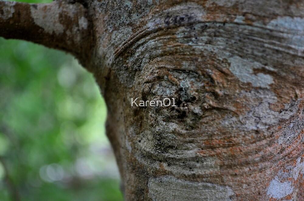 Eye of a deer by Karen01
