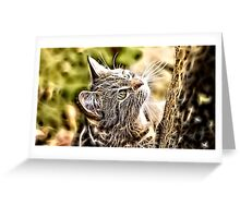 Wild nature - pussy #3 Greeting Card