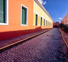 Cobblestone Street by George Oze
