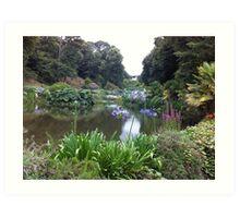 Trebah Gardens Art Print