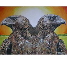 Twin Eagles, 2000 (colour pencil) Photographic Print