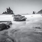 Playa de Benijo II by Zoltán Duray