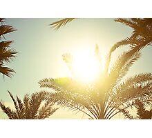 sun catcher Photographic Print