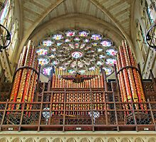 The Organ - Arundel Cathederal - HDR by Colin  Williams Photography