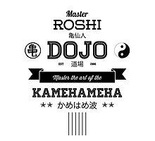 Master Roshi Dojo v2 by tombst0ne
