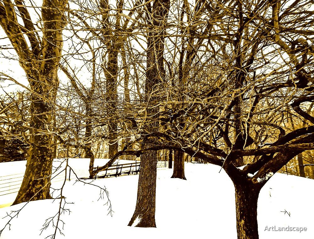 White Winter in NYC by ArtLandscape