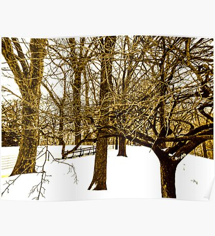White Winter in NYC Poster